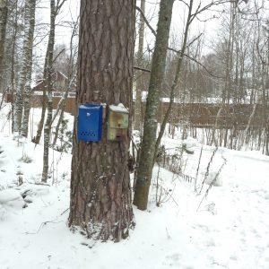Почтовые ящики: рядом старый и новый